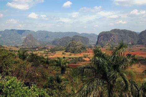 Typisk Viñales-bild, lånad från Wikimedia. De små bergen kallas 'mogotes'. (Bild i allmän domän. Fotograf: Francesco Gorup de Besanez.)